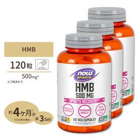 HMB 500mg 120粒 NOW Foods(ナウフーズ) [3個セット]【送料無料】
