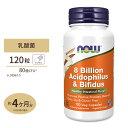 アシドフィルス+ビフィダス 80億 120粒 NOW Foods(ナウフーズ)