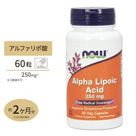 アルファリポ酸 250mg 60粒 NOW Foods(ナウフーズ)【ポイントUP対象★10/27 17:00-11/10 9:59迄】