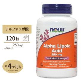 アルファリポ酸 250mg 120粒 NOW Foods(ナウフーズ)