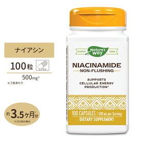 ナイアシンアミド(ビタミンB-3) 500mg 100カプセル《約3か月分》Nature's Way(ネイチャーズウェイ)フラッシュ つかれ お肌 美容 健康