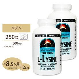 L‐リジン 500mg 250粒ダイエット・健康 健康 アミノ酸配合 [2個セット]