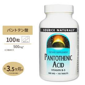 パントテン酸 500mg 100粒ダイエット・健康 サプリメント 健康サプリ ビタミン類 パントテン酸配合