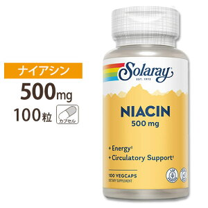 ナイアシン(ビタミンB3)500mg100粒