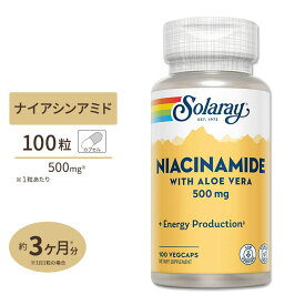 ナイアシンアミド(ビタミンB3) 500mg 100粒