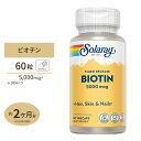 ビオチン(ビタミンH) 5000mcg 60粒 60日分 タイムリリース美容/ヘアケア/サプリメント/健康/サプリ/ビタミン/ビオチン…