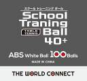 【5日限定P最大10倍】ノーブランド卓球TWC スクール・トレーニングボール 40+ 100個入りDV010