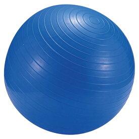 CAPTAIN STAG(キャプテンスタッグ)アウトドアフィットネスボール55cm<ポンプ付き>(ブルー)   MH−6947MH6947