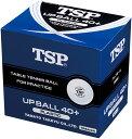 TSP卓球ボール【卓球用練習球】アップボール40+練習球 10ダース入010047