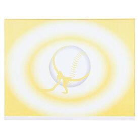 【ラッキーシール対象】ZETT(ゼット)野球&ソフトギフト・ノベルティー記念色紙(大判サイズ)BCP2