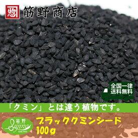 ブラッククミンシード 100g(インド産) 送料無料 ポイント消化 スパイスカレー スパイス