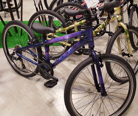 MARINBIKES ドンキージュニア24 リミテッドカラー 2020年 マリンバイク Donky Jr24 Limited Color[GATE IN]
