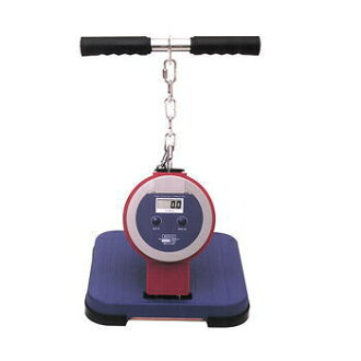 TAKEI Takei apparatus industry T.K.K. 5402 back -D digital strength of back muscle meter