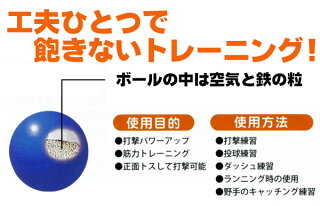 ダイトベースボールトレーニング用品バッティングトレーニング用ボールサンドボール500g【ss-50】