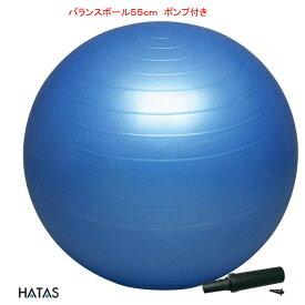 バランスボール セーフティ 55cm ポンプ付 DB55P HATAS(ハタス)
