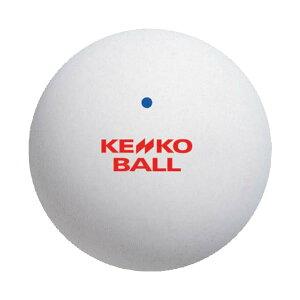 ソフトテニス ボール ケンコー KENKO ソフトテニスボール 公認試合球 同色2個入り【テニス 軟式テニス ボール テニスボール 軟式テニスボール soft tennis ball】