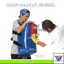 Win bc 4500 1