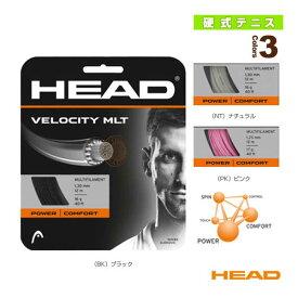 【テニス ストリング(単張) ヘッド】 Velocity MLT/ベロシティ・マルチ(281404)(マルチフィラメント)ガット