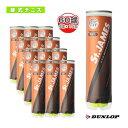 【テニス ボール ダンロップ】 St.JAMES(セントジェームス)『4球×15缶』テニスボール(STJAMESE4CS60)