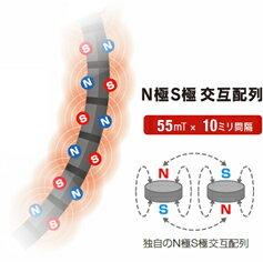 コラントッテTAOネックレスAURAColantotteスポーツネックレス・磁気ネックレス(男性用・女性用)【RCP】0407