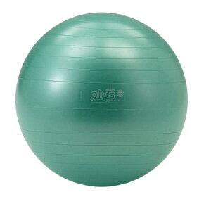 バランスボール エクササイズボール Gymnic ギムニクカラーボール PLUS 55cm D5421G ヨガボール リラックス 体幹 エクササイズ トレーニング リハビリ ウエルネス 運動不足解消