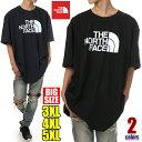 ノースフェイス Tシャツ 半袖 メンズ 大きいサイズ THE NORTH FACE ハーフドーム ロゴ Tシャツ 大きいサイズ ビッグT…