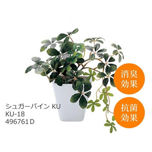 あす楽 光触媒 インテリアグリーン シュガーバイン KU KU-18 496761D 観葉植物 造花 人工 フェイクグリーン