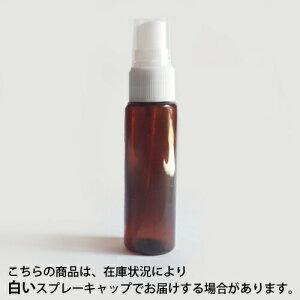 スプレープラスチック(茶色)30ml10本セット【RCP】