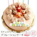 誕生日ケーキ バースデーケーキ生チョコクリーム デコレーションケーキ 5号誕生日 ケーキ 子供[凍]送料無料 チョコレ…