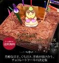 こどもの日 チョコレートケーキDX チョコレートケーキ【送料無料】子供の日ケーキ こいのぼり ギフト子供[凍]お菓子 プレゼント