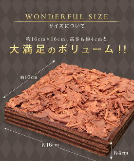 チョコレートケーキ【送料無料】nバースデーケーキ誕生日ケーキ誕生日バースデーケーキ子供[凍]ギフト誕生日プレゼント洋菓子七五三祝いクリスマス