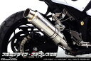 WirusWin ニンジャ Ninja250(EX250L)・Z250(ER250C) スリップオンマフラー スポーツタイプ /ウイルズウィン
