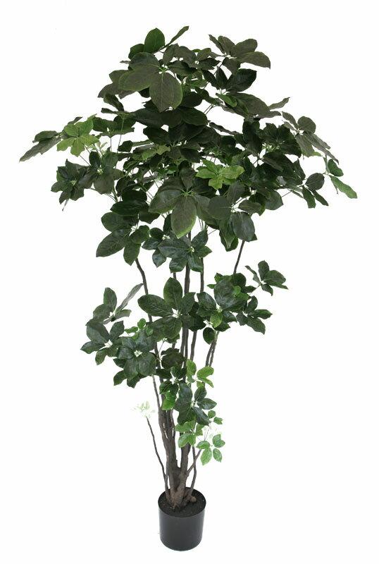 【フェイクグリーン・人工植物・カポック】送料無料 フェイクグリーン シェフレラ1750