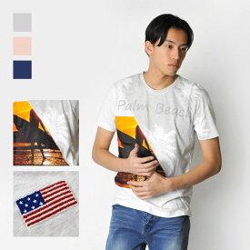 【メール便可(単品購入時)】EVOLUTION エボリューション Tシャツ メンズ 半袖 春夏秋 プリント 切替 サーフ系 グレー ピンク ネイビー M L XL LL 2L 91161