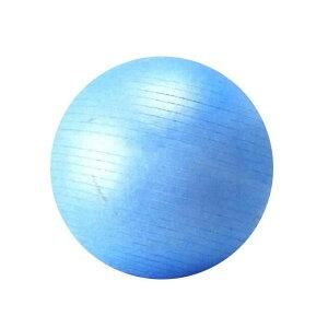 SINTEX(シンテックス) トータルフィットネス フィットネスボール 75cm バランスボール ブルー NLS7475オススメ 送料無料 生活 雑貨 通販