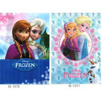 お役立ちグッズ 2014年 アカデミー賞受賞 ディズニー(Disney) アナと雪の女王 クリアファイル×10枚セット IG-1071・B