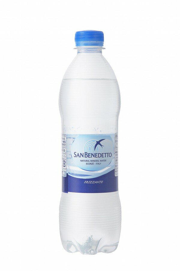 飲料 美味しい 評判 スパークリングウォーター ペットボトル 500ml×24