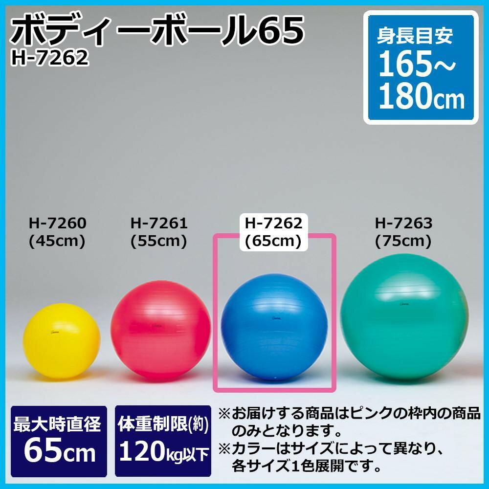 スポーツ・アウトドア関連商品 TOEI LIGHT トーエイライト ボディーボール65 H-7262