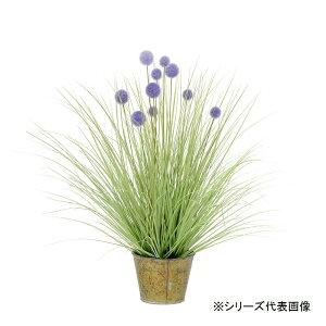 人工観葉植物 ボールグラスパープルバケット S 約71cm 159018300オススメ 送料無料 生活 雑貨 通販
