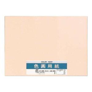 色画用紙 N422 うすもも 10セット Pエ-N42RPおすすめ 送料無料 誕生日 便利雑貨 日用品