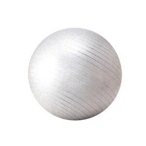 SINTEX(シンテックス) トータルフィットネス フィットネスボール 65cm バランスボール シルバー NLS7465オススメ 送料無料 生活 雑貨 通販
