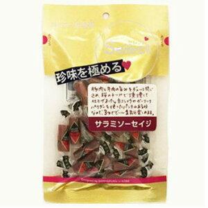 駄菓子珍味関連 おつまみ セレクト サラミソーセイジ 48g×10入り 4760 おすすめ 送料無料 おしゃれ