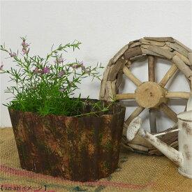 植木鉢 園芸用品 ジャンクガーデンに メタルプランター/オバール
