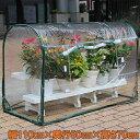 ダリヤ 家庭用 ビニールハウス 小型 簡易室温 組立式 グリーンキーパー ドーム型ロング 家庭菜園 園芸 ガーデニング