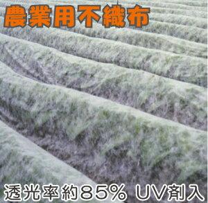 農業用 不織布 1.2m×50m×3本 150m UV剤入 保温シート 農用 防鳥ネット 防虫シート ロール 農業資材 園芸資材