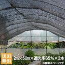 遮光ネット 黒 2m×50m×2本セット 100m 遮光率65% [農業用遮光シート 農業資材 農業用品 園芸用品 日よけ 農業用ネット]