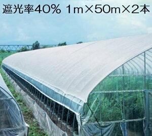 遮光ネット 白 1m×50m×2本セット 遮光率40% 100m 農業用遮光シート 日よけ 日除け 農業用ネット