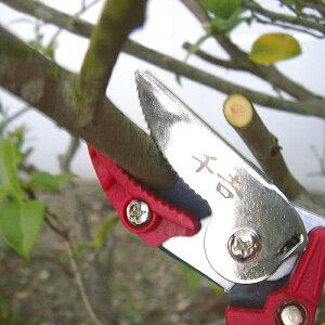 千吉剪定ばさみ剪定バサミ剪定鋏枝きりはさみ小枝きりキャッチ付SGP-35C