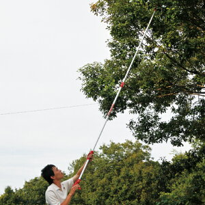 高枝切りバサミ高枝切りばさみEGLP-1伸縮2段3Mのこぎり付[高枝切鋏剪定はさみガーデニング]