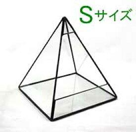 テラリウム「ピラミッド・Sサイズ」